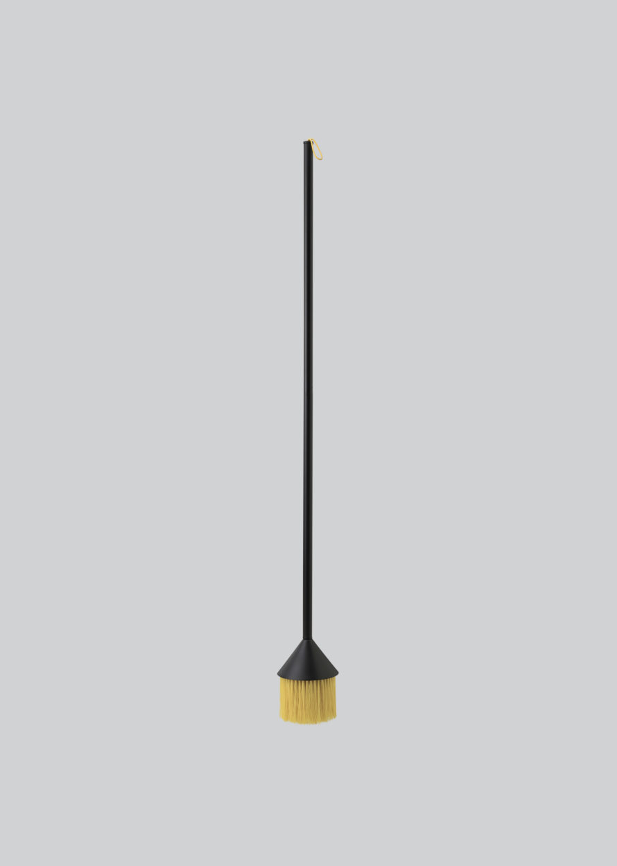 Northern_Mim_broom_yellow-890x1250